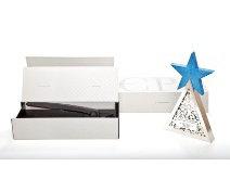 2010: premio per il miglior packaging - Mediastars